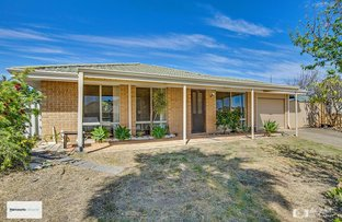Picture of 23 River Fig Place, Alexander Heights WA 6064