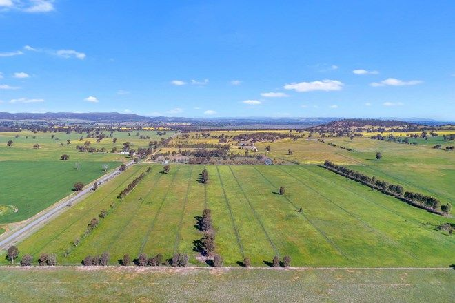 Picture of Lot 1 1041 Glenrowan Boweya Rd, TAMINICK VIC 3675