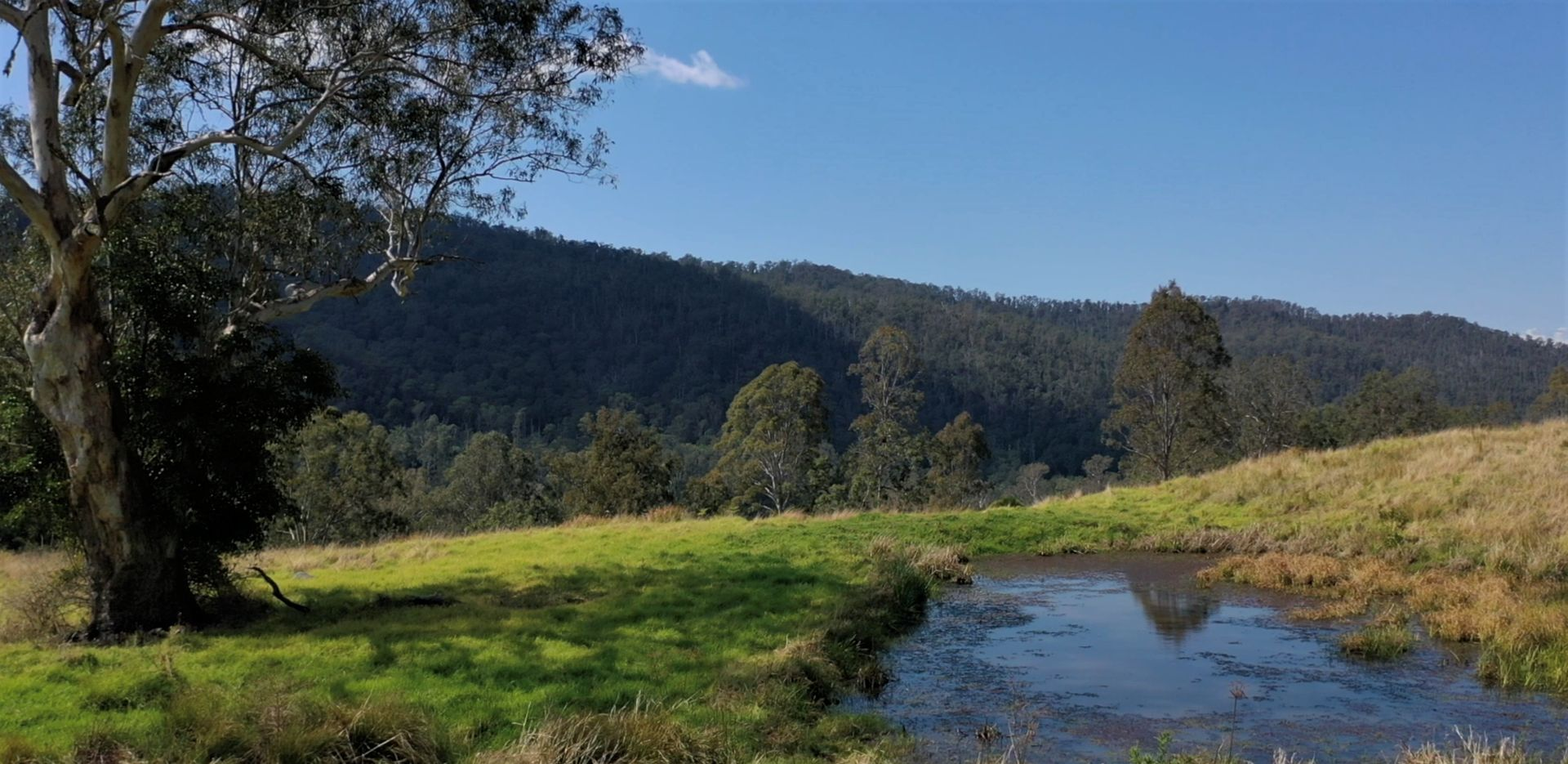 27 Smiths Creek Road, Smiths Creek NSW 2474, Image 1