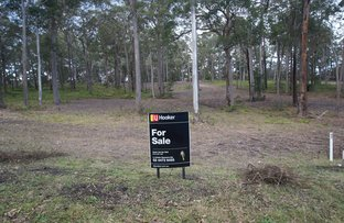 Picture of Lot 12/232 Cullendulla Drive, Long Beach NSW 2536