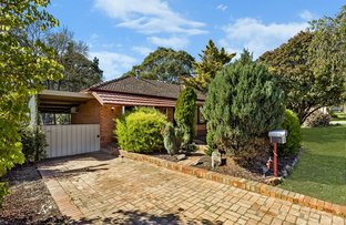 Picture of 13 Yarramie Ave, Banksia Park SA 5091
