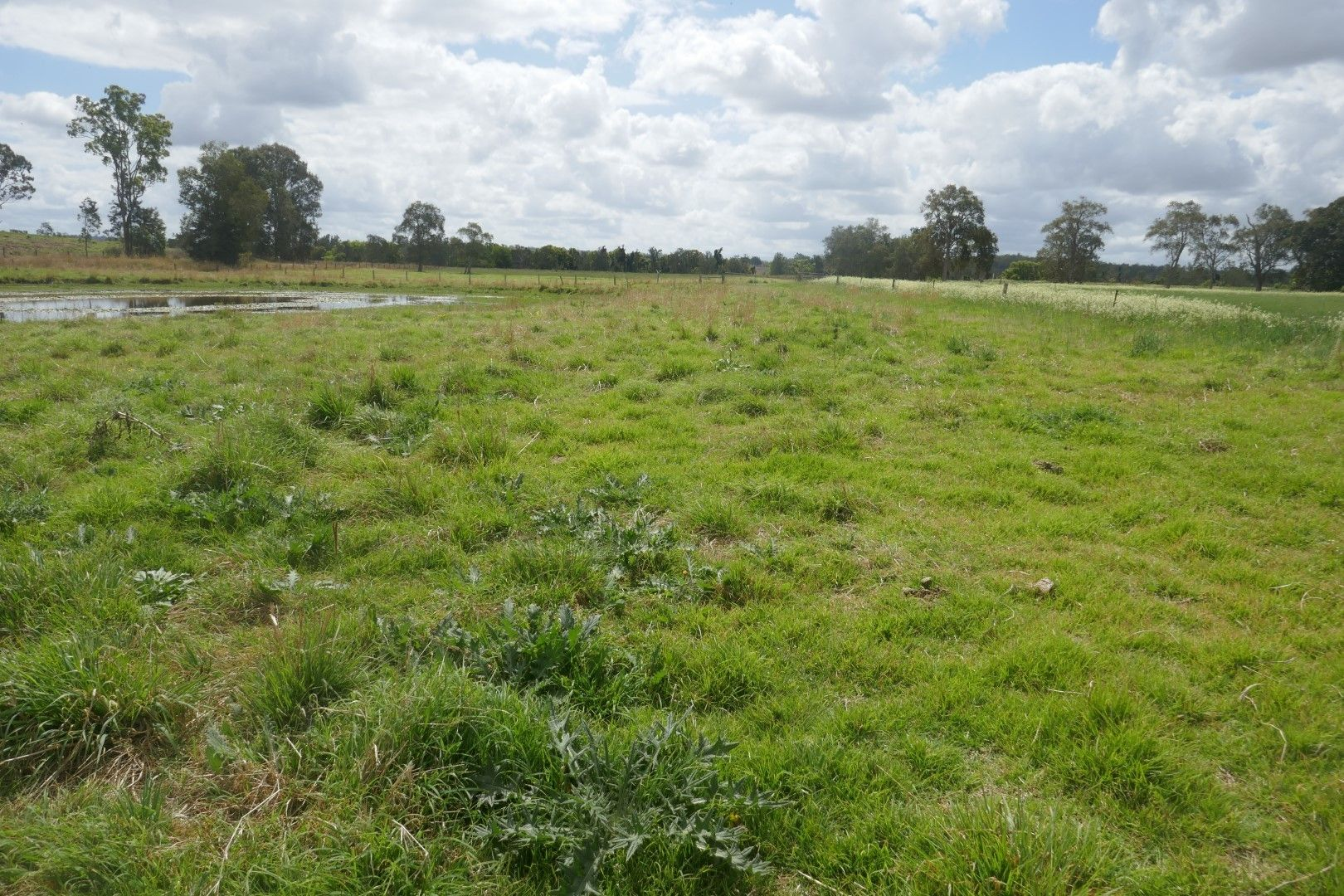 Lot 16 Sextonville Road, Kyogle NSW 2474, Image 1