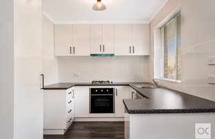 Picture of 4/186 Jeffcott Street, North Adelaide SA 5006