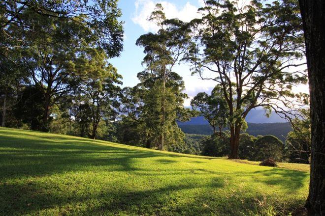 Picture of Lot 10, 2981 Mebbin Springs, Kyogle Road, KUNGHUR NSW 2484