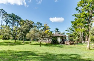 Picture of 515 London Road, Chandler QLD 4155