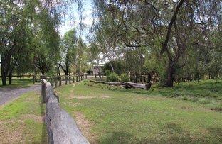 Picture of Virginia Rd, Goondiwindi QLD 4390