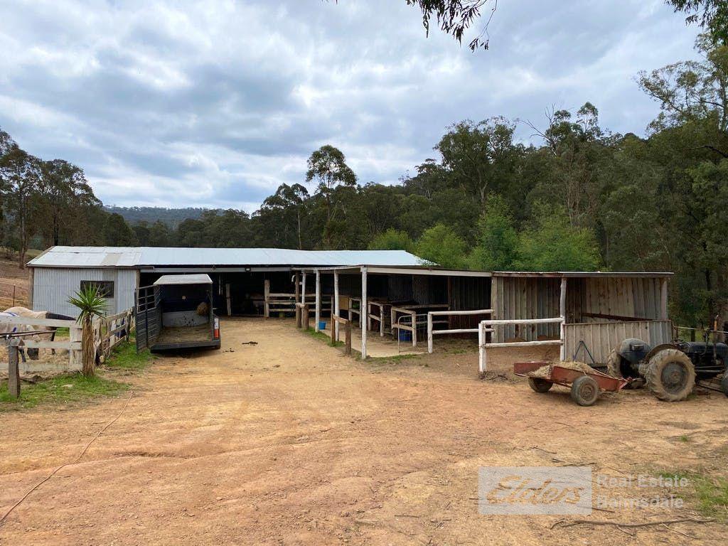 1550 Bullumwaal  Road, Mount Taylor VIC 3875, Image 1