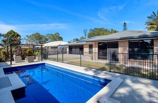 Picture of 16 Song  Close, Andergrove QLD 4740