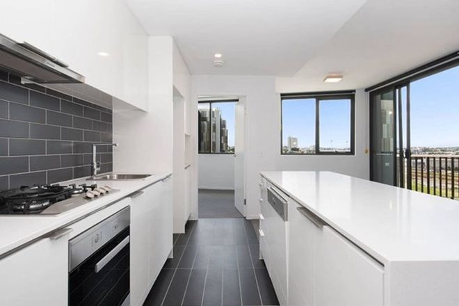 Picture of 305/31 Peter Doherty Street, DUTTON PARK QLD 4102