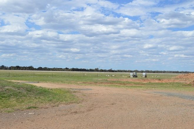Picture of Lot 100 Oxley Highway, COLLIE NSW 2827