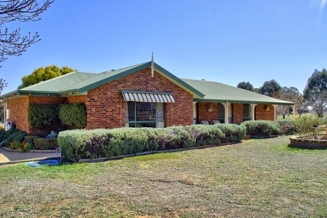 187 Real Estate Properties for Sale in Cowra, NSW, 2794 | Domain