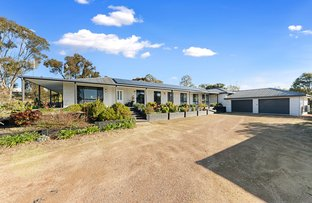 Picture of 24 Michelle Drive, Maiden Gully VIC 3551