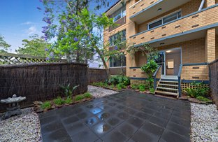 Picture of 3/60 Alt st, Ashfield NSW 2131