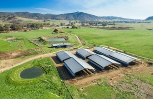 Picture of 2506 Westbrook Road, Tarcutta NSW 2652