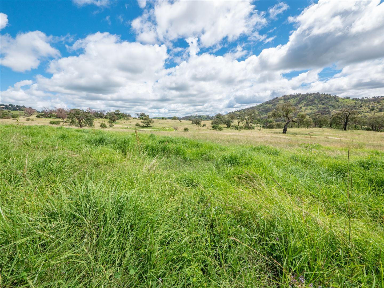 1155 Bindawalla Rd, Bundarra NSW 2359, Image 2