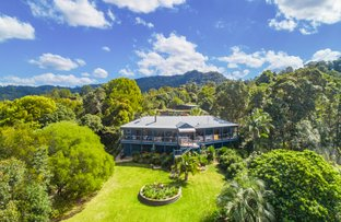 54 Robinsons Road, Wilsons Creek NSW 2482