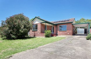 Picture of 44 Ackland Avenue, Christies Beach SA 5165