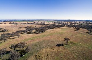 2160 KINGS PLAINS ROAD, Inverell NSW 2360