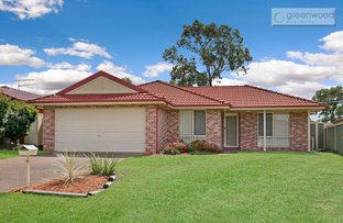 Picture of 17 Paine Place, Bligh Park NSW 2756