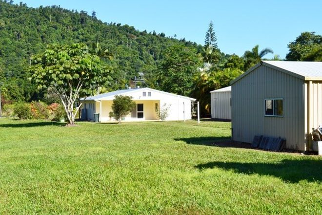Picture of 1231 Old Tully Road, EL ARISH QLD 4855