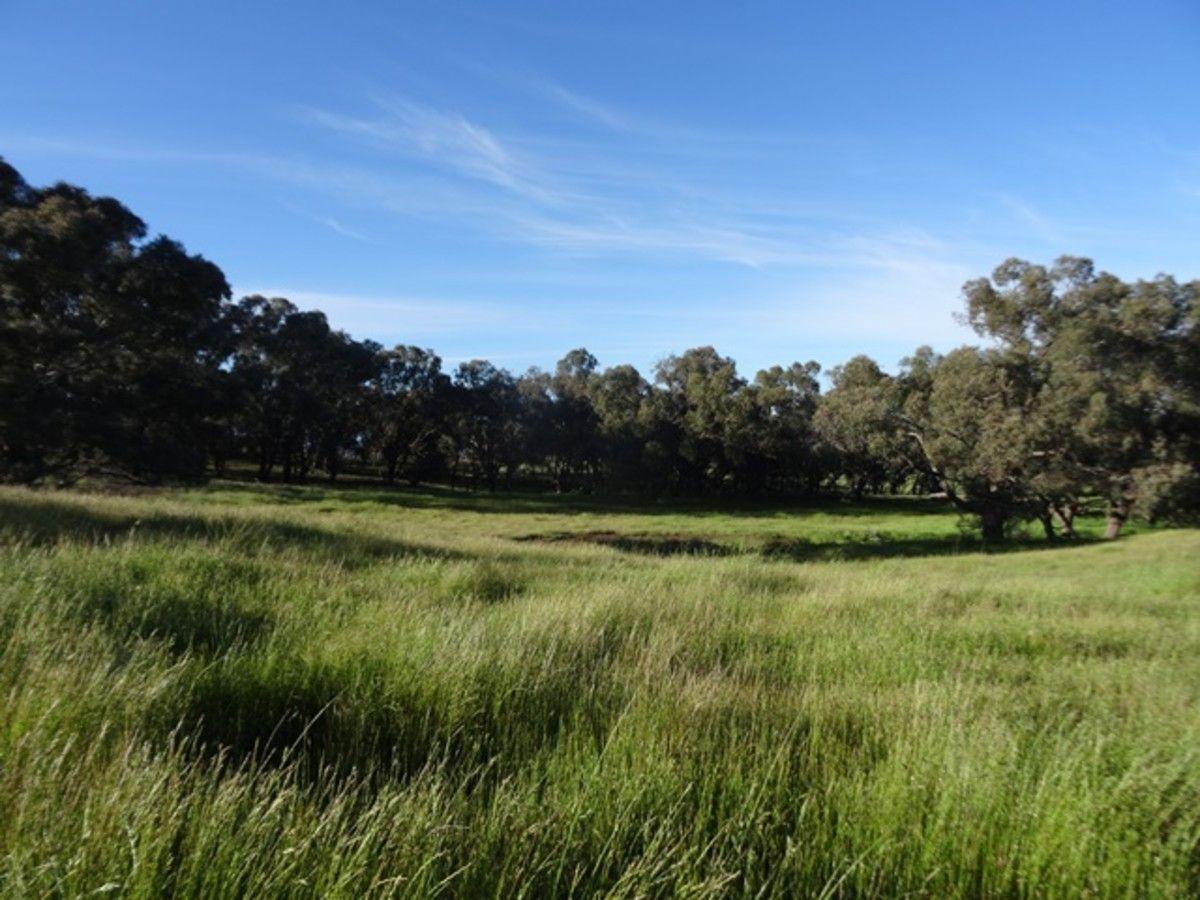 1864-1868 Euchareena Road, Molong NSW 2866, Image 2