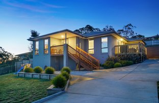 Picture of 11A Shelmore Drive, Old Beach TAS 7017