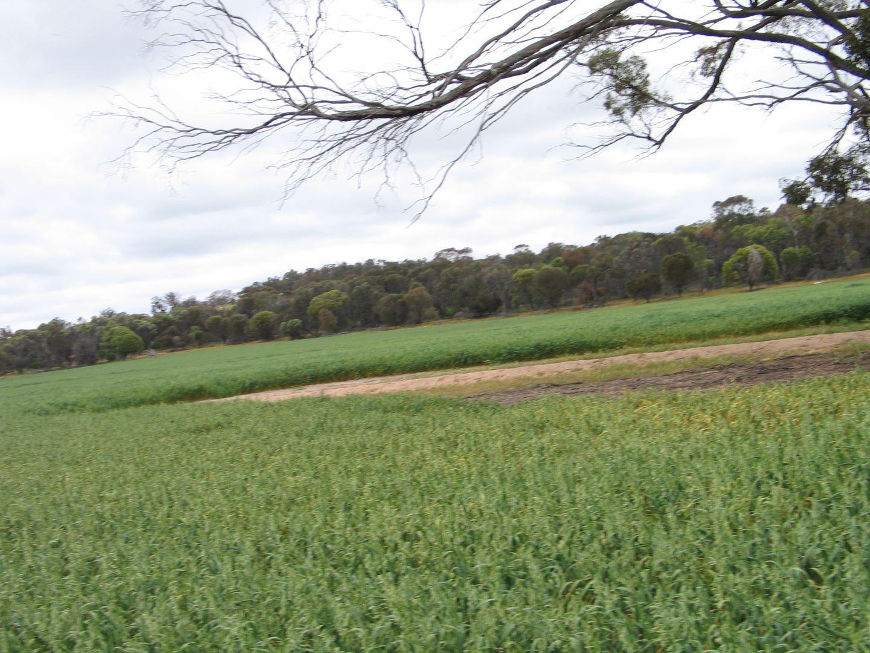 Browns Clarke Road, Coalfields Highway, Arthur River WA 6315, Image 2