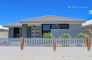 Picture of 20 Bluewater Drive, Alkimos WA 6038