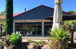 8 Fern Street, Tamborine Mountain QLD 4272