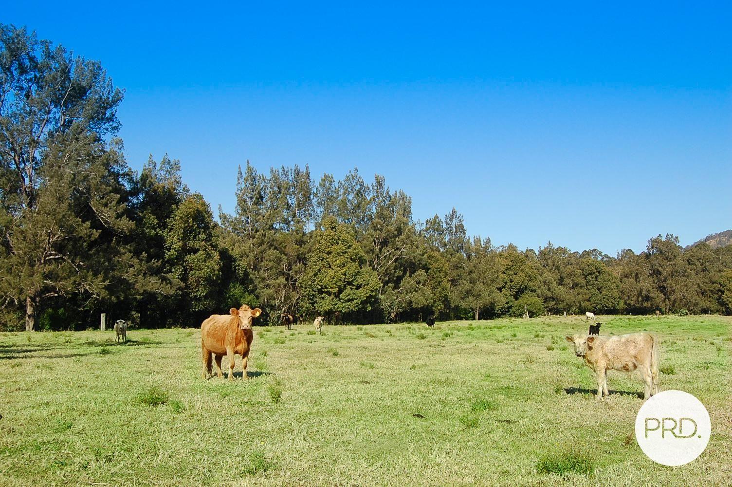 83 Farm Road, Bonalbo NSW 2469, Image 0