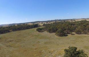 Picture of 366 Range Road, Grabben Gullen NSW 2583