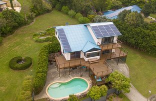 Picture of 36 Ribbonwood Place, Terranora NSW 2486