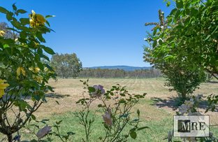 Picture of 821 Howes Creek Road, Mansfield VIC 3722