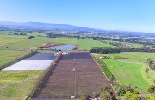Picture of 13 Melba Highway, Coldstream VIC 3770