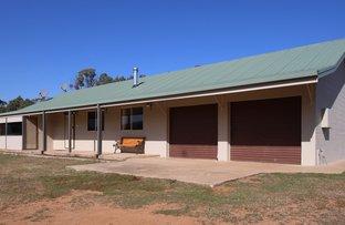 Picture of 287 Willigobung Road, Willigobung NSW 2653