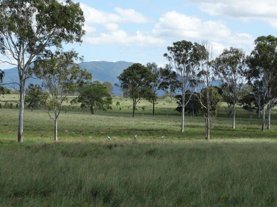 185 Dahls Road, Miriam Vale QLD 4677, Image 0