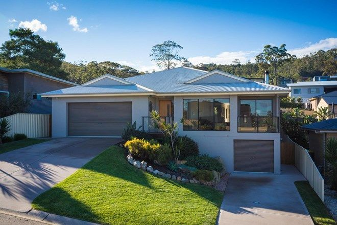 Picture of 50 Mulloway Circuit, MERIMBULA NSW 2548