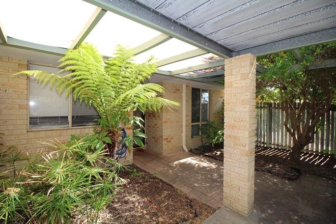 Picture of 39 35 Winnacott Street, WILLAGEE WA 6156