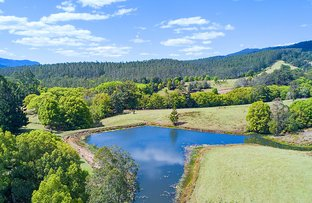 Picture of 1718 Byrill Creek Road, Brays Creek NSW 2484