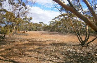 Picture of Lot 132 Old Coach Road, Blanchetown SA 5357
