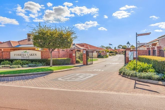 Picture of 120/41 Geographe Way, THORNLIE WA 6108