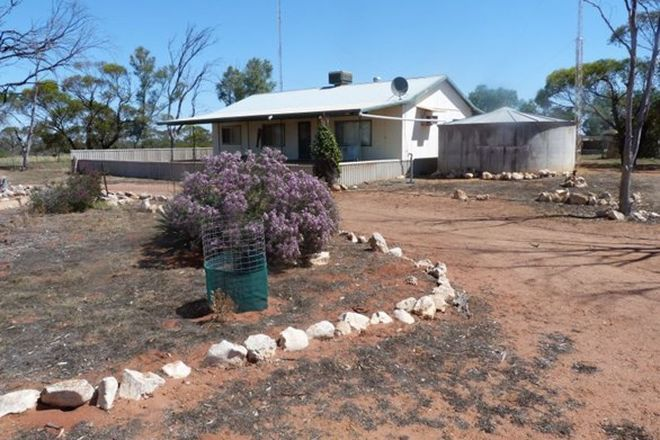 Picture of 3810 Balla-Whelarra Road, BINNU WA 6532
