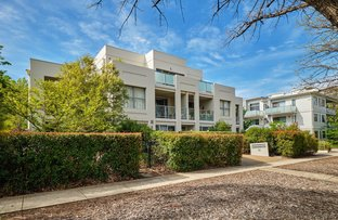 Picture of 12/12 Condamine Street, Turner ACT 2612