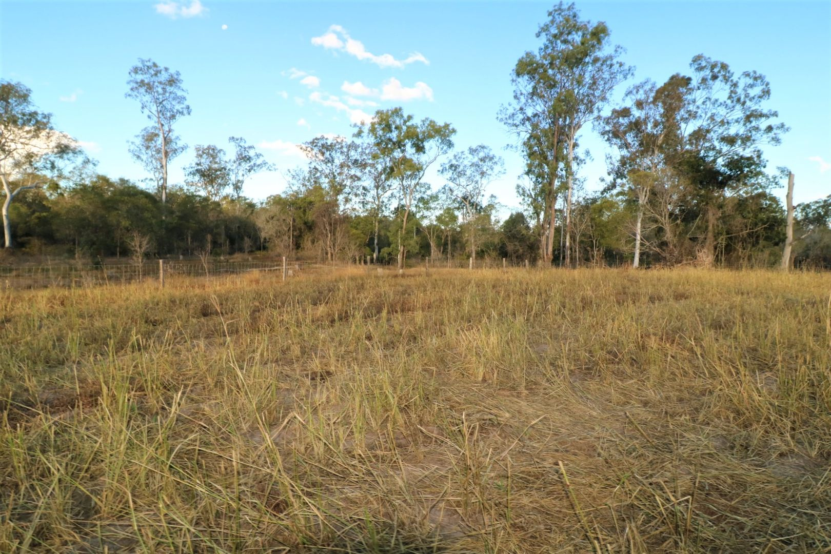 385 Ringwood Road, Booyal QLD 4671, Image 1