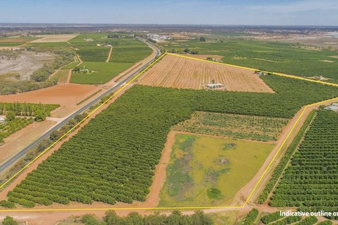 Picture of Lot/939 Mourquong Road, MOURQUONG NSW 2739
