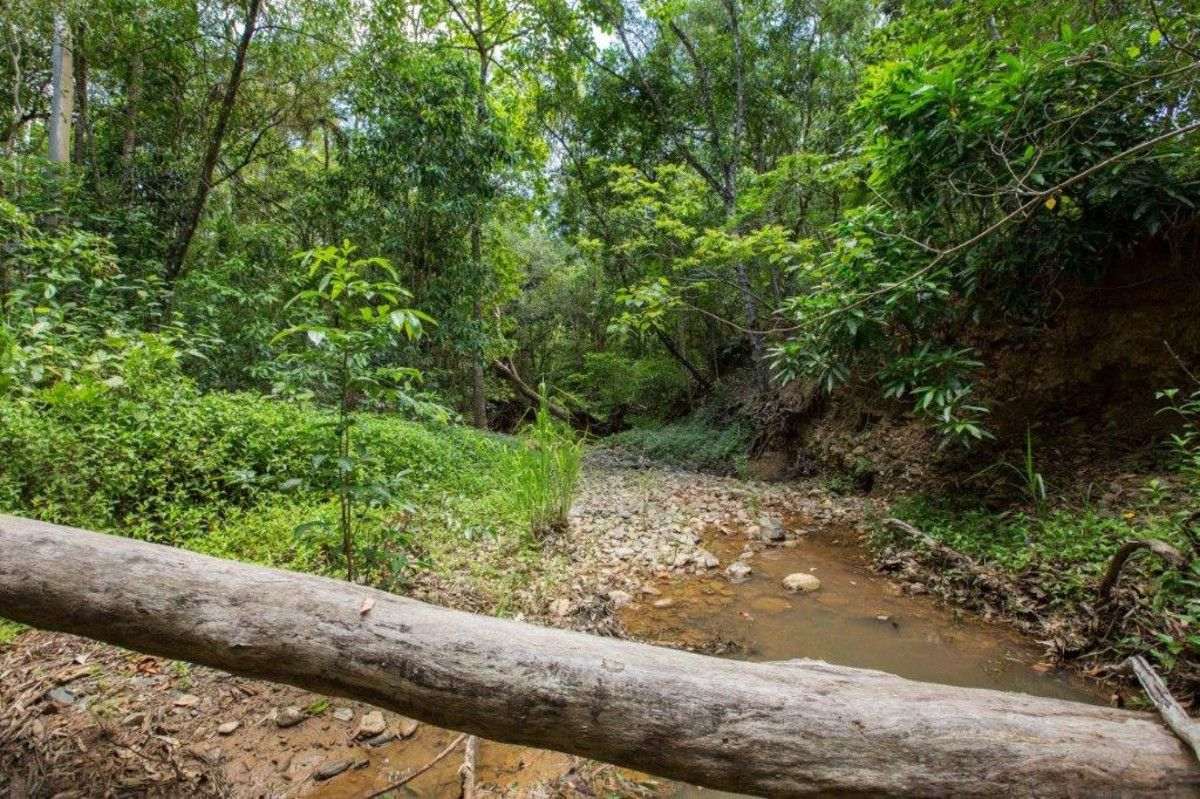 Lot 33 Mooreland Place, Kewarra Beach QLD 4879, Image 1