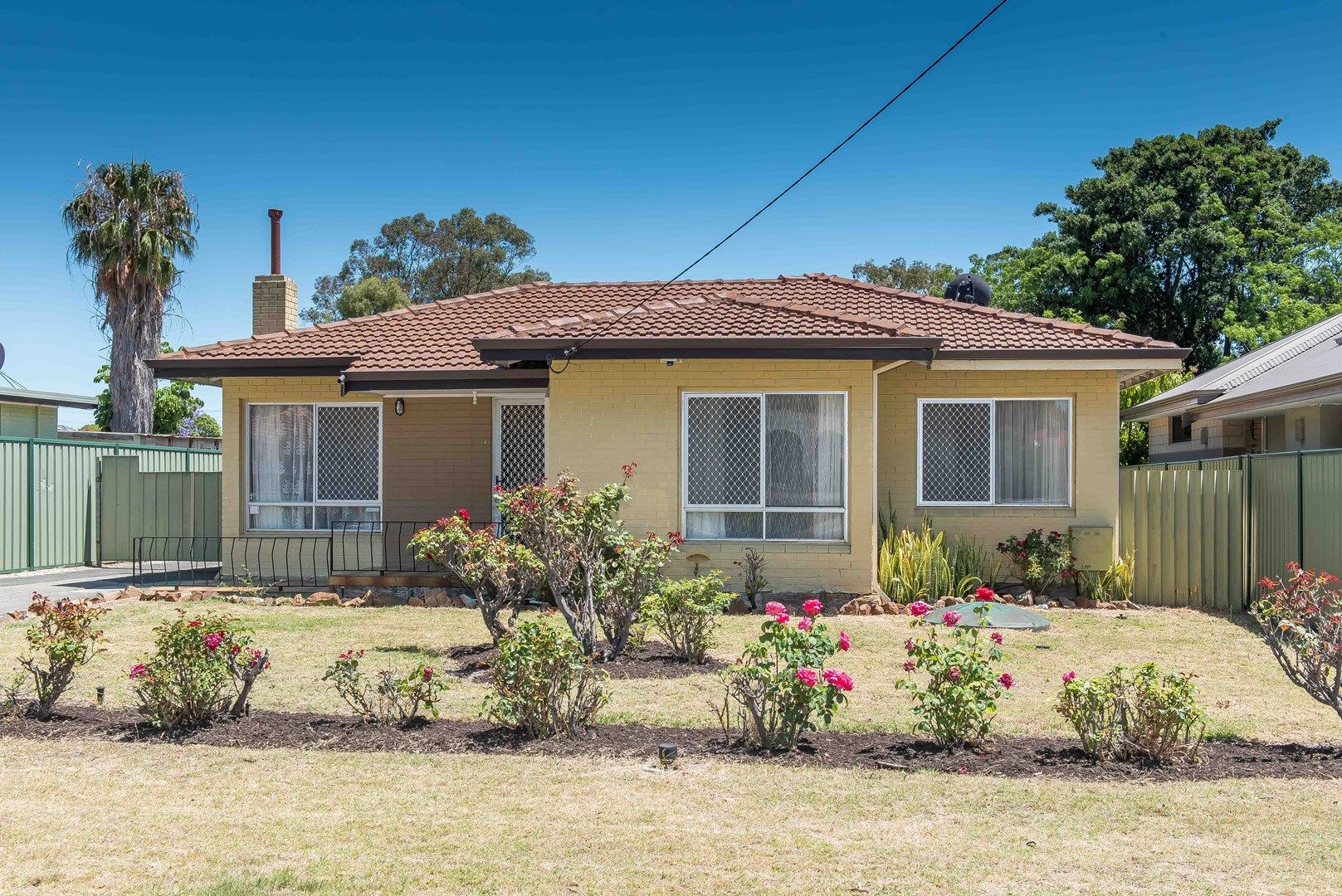 148 Williamson Avenue, Cloverdale WA 6105, Image 0