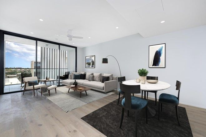 Picture of 808/109 Oxford Street, BONDI JUNCTION NSW 2022