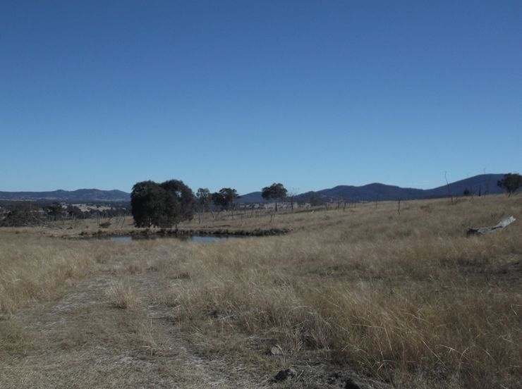 Lot 563 Tarban Road, Tenterfield NSW 2372, Image 0