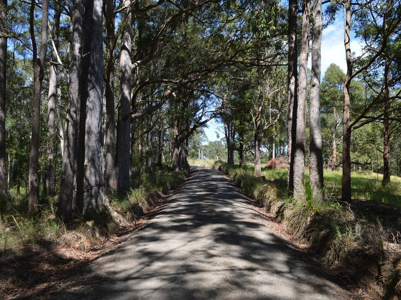 Lot 2 Curramore Road, Curramore QLD 4552, Image 0